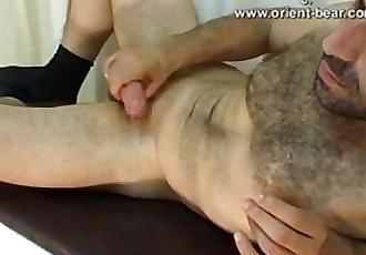 Orient bear taruk