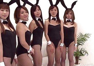票 - 日本 的小兔子 狂歡 - 5 min hd