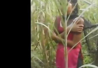 Desi village sex video